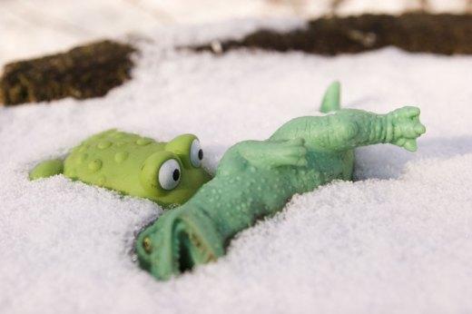 Arctic Frogs